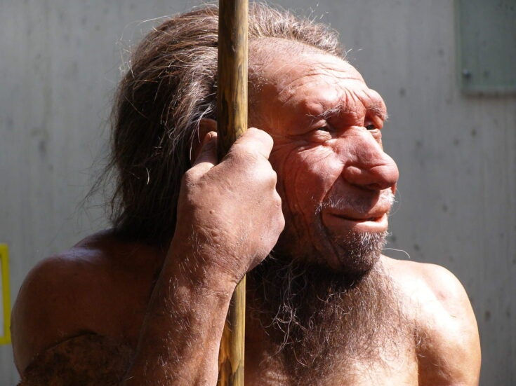 Further evidence emerges suggesting Neanderthals weren't so different to us
