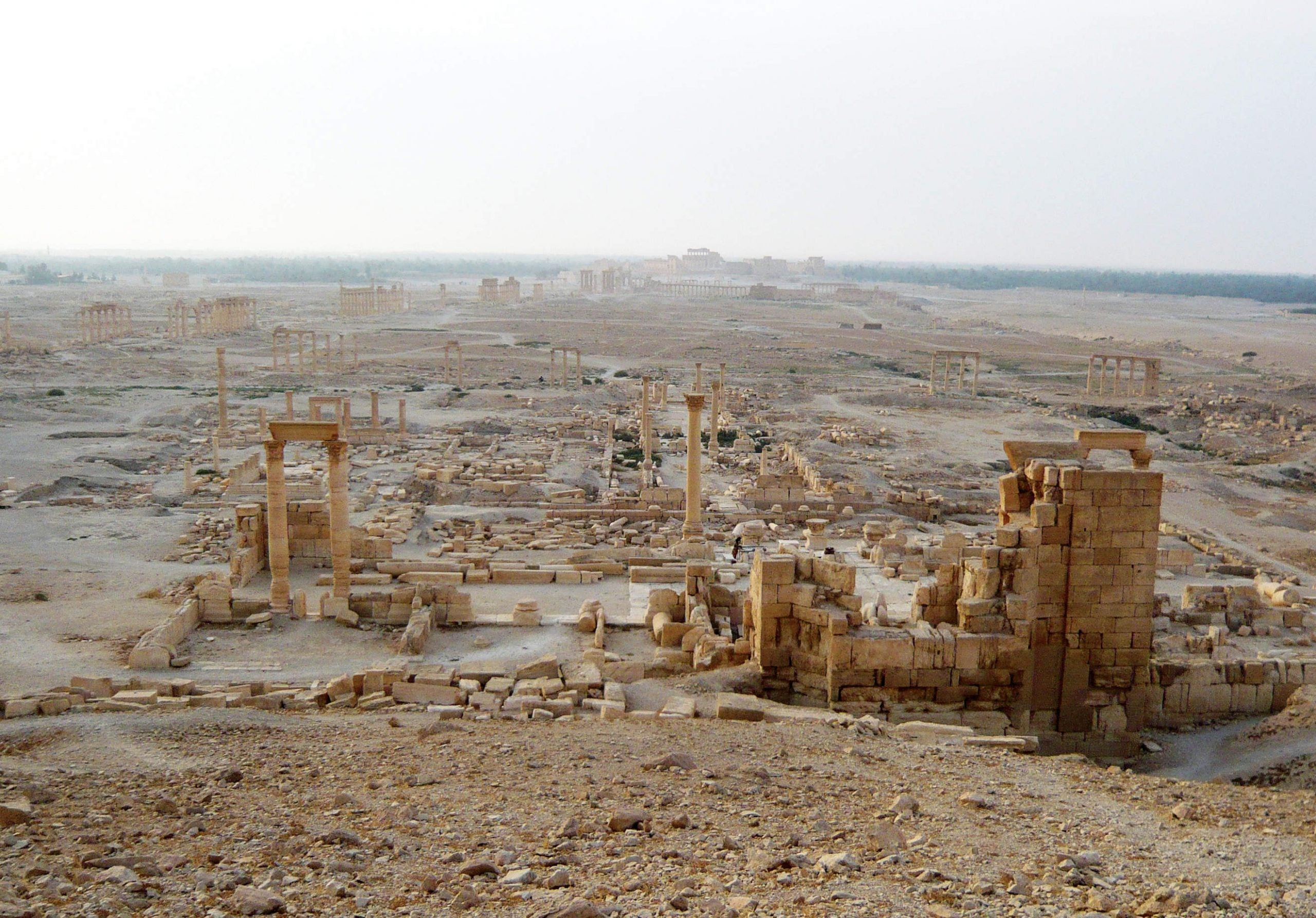 The men saving Syria's treasures from Isis