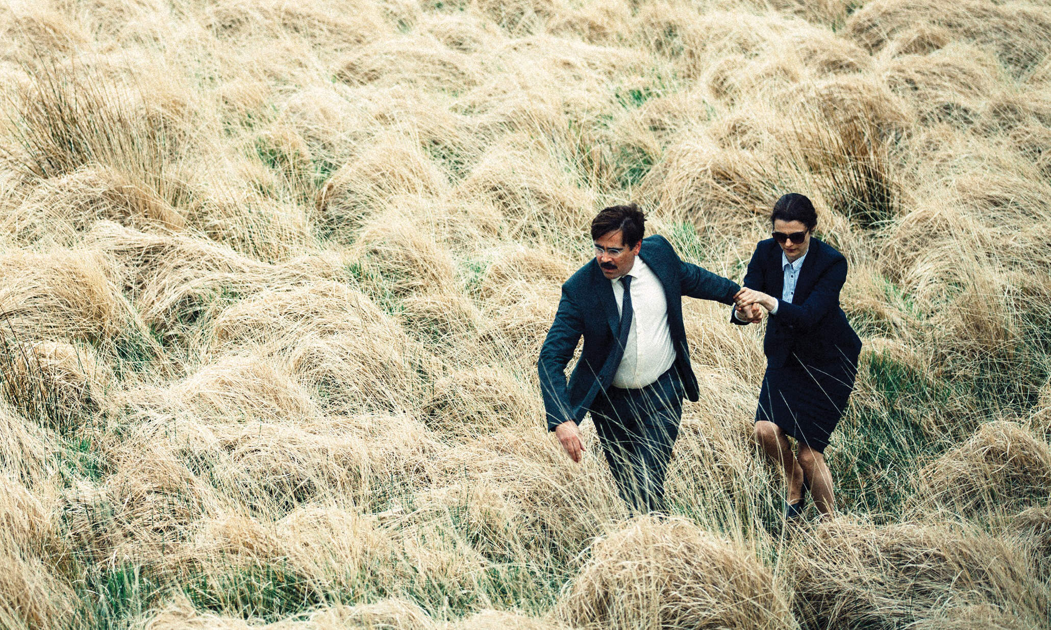 Loving the crustacean: an unstable fantasy in dating dystopia The Lobster