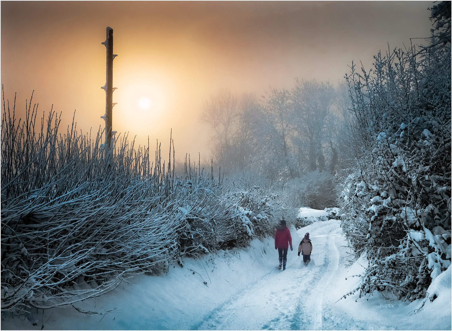 Dreaming of a white Christmas? Why we're so in love with snow
