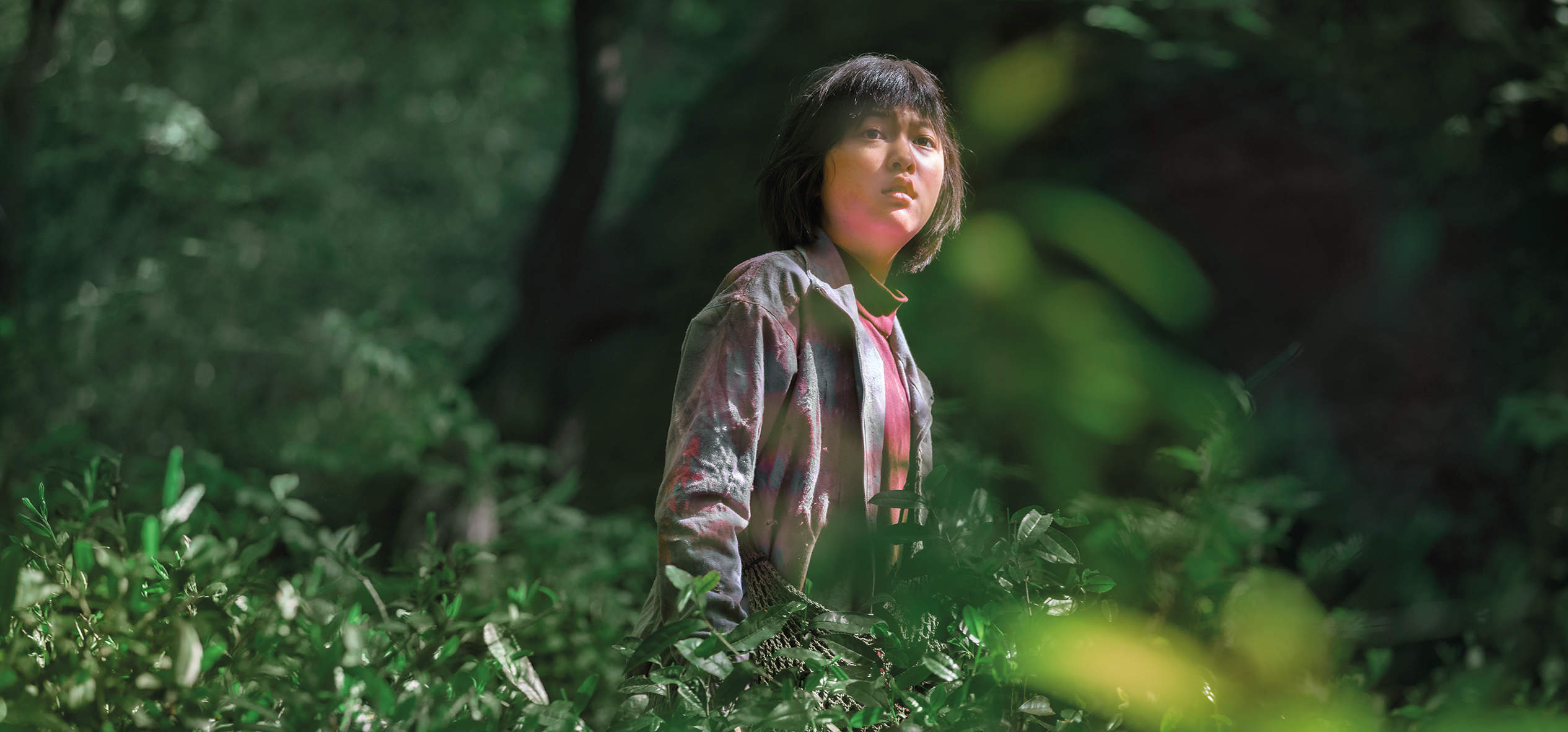 Okja begins as a buddy flick – but ends up in the slaughterhouse