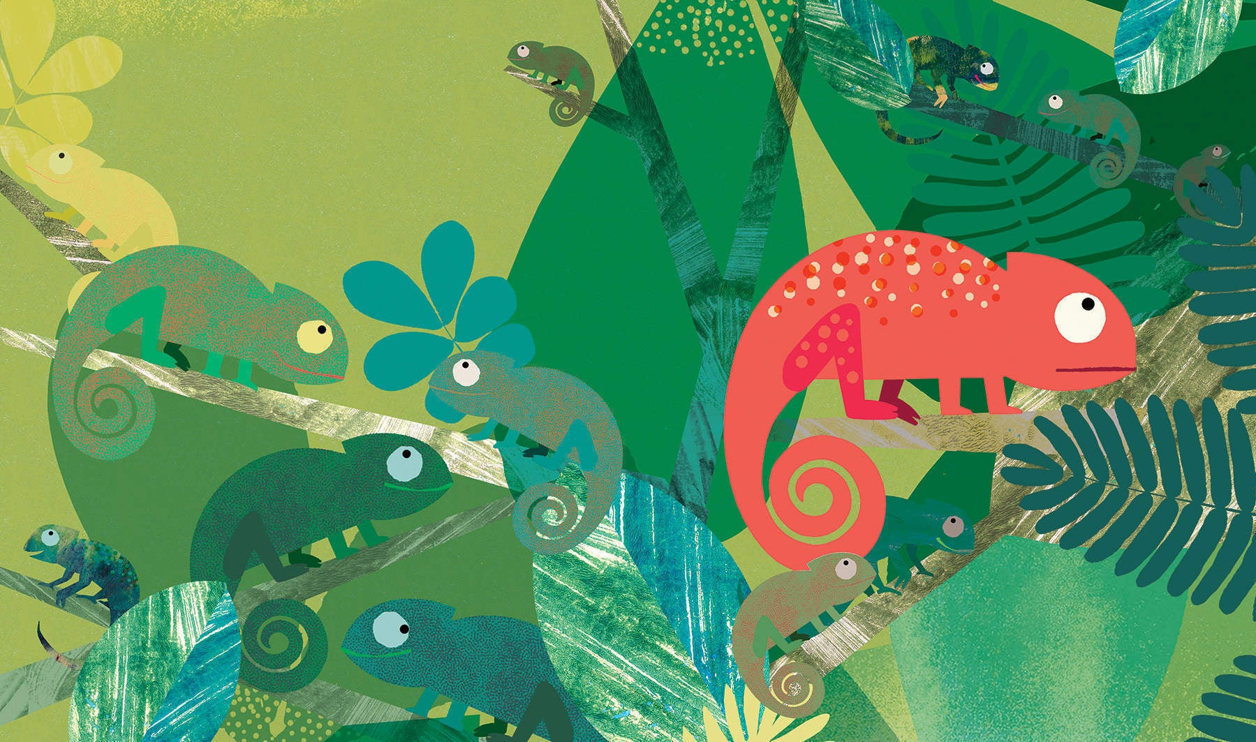 Bold frogs, helpful dogs and teen spies: the best children's books for the summer