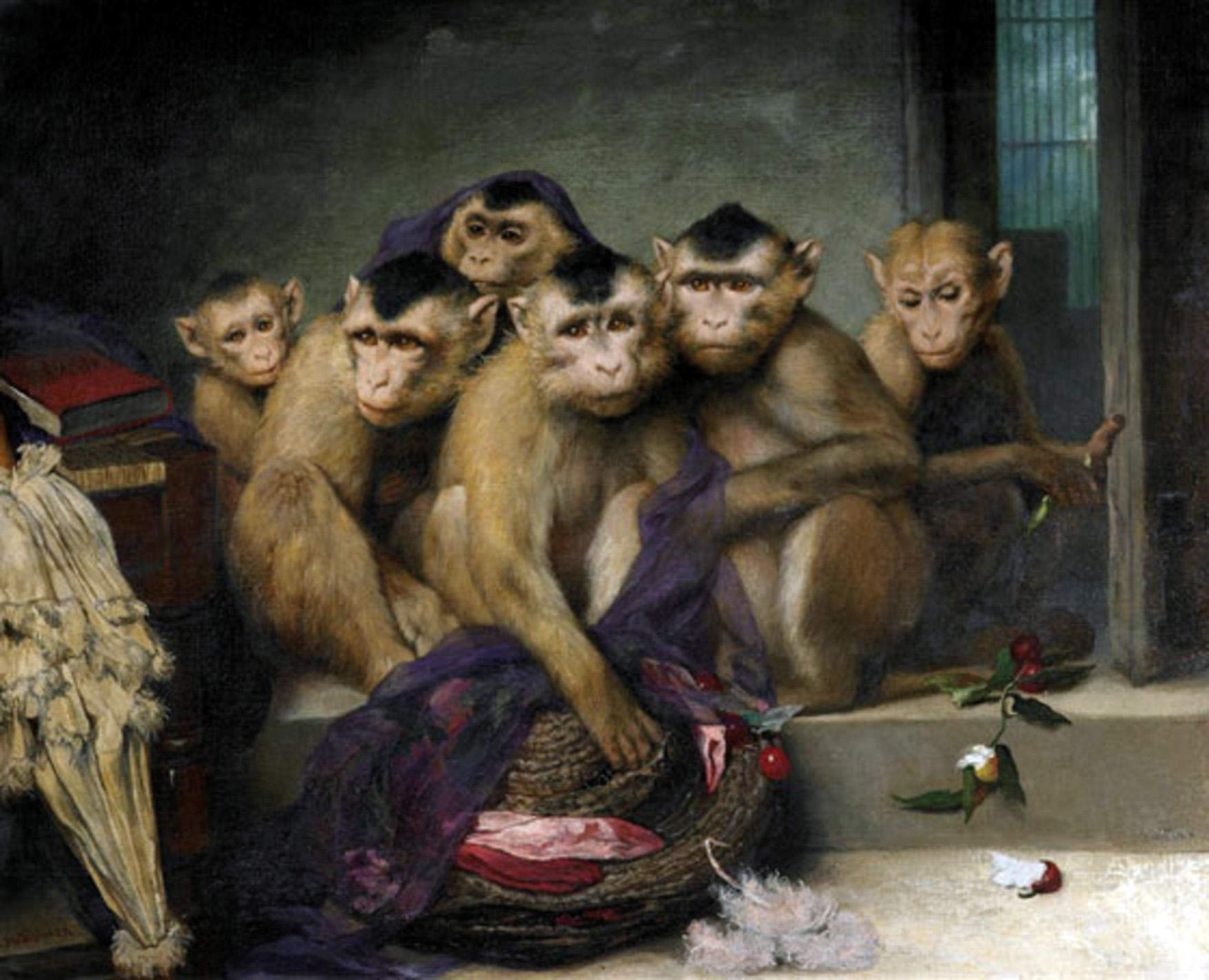 The man who lived with monkeys – and what he learned from them