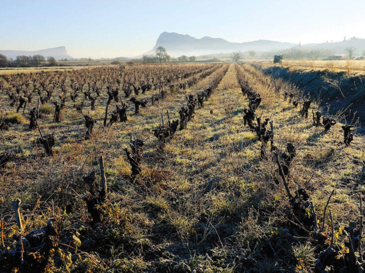 You'll find many kinds of folly in Languedoc, the world's biggest wine region