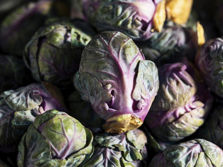 At 2am, Britain's largest wholesale market buzzes with thoughts of Brexit and purple Brussels sprouts