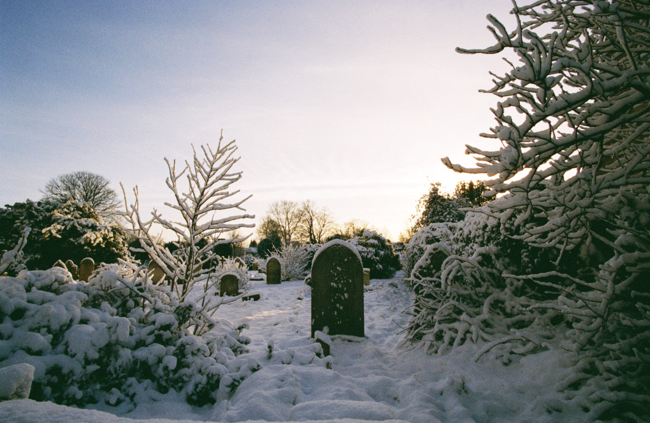 Why the bleak midwinter is not as dull, cold and silent as it first seems