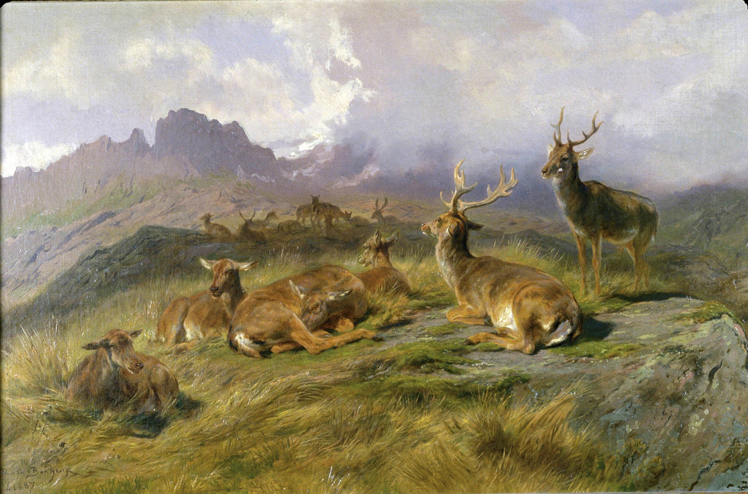 The wild pictures of Rosa Bonheur