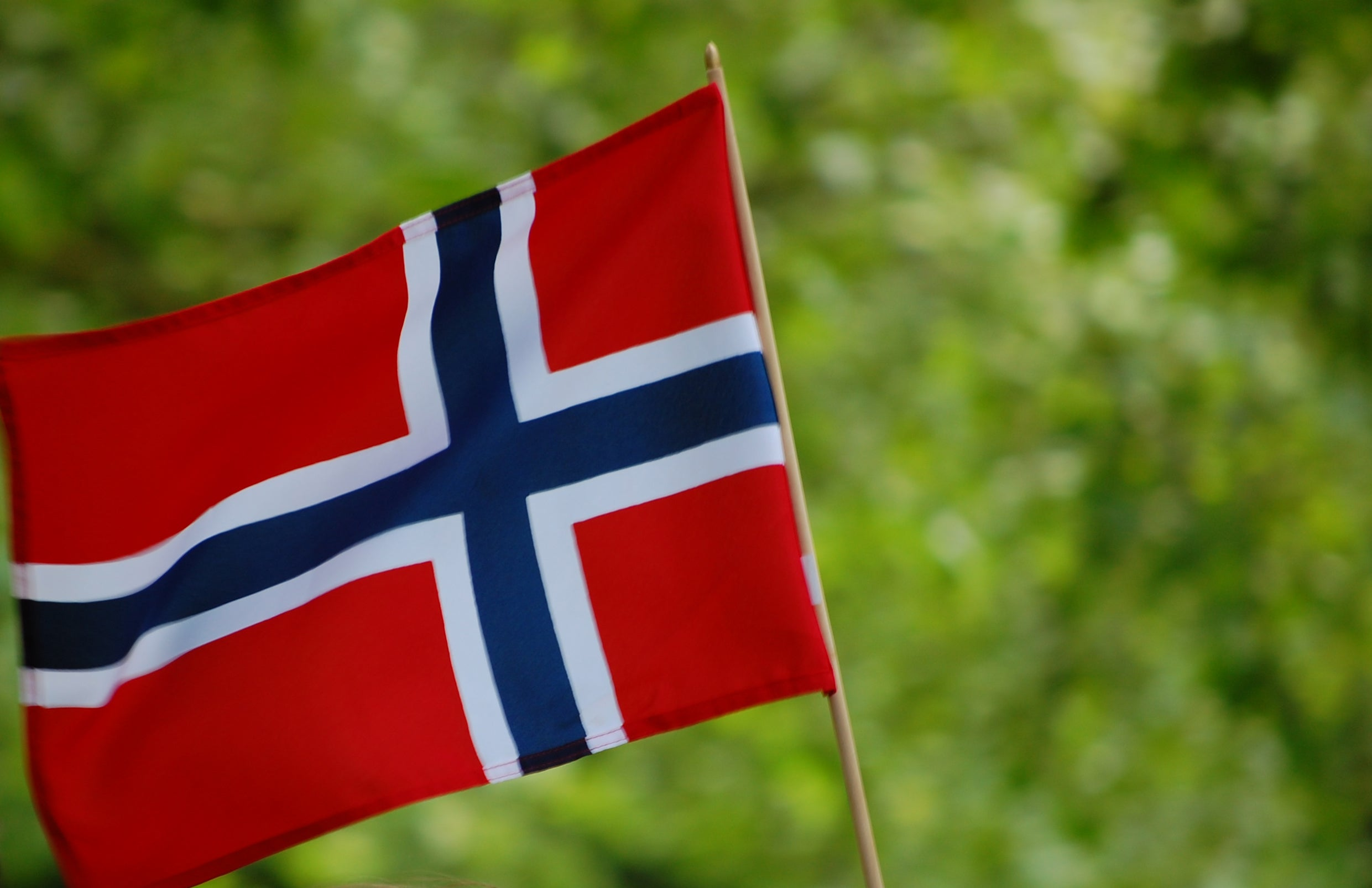 Without a general election, Norway plus is our best option