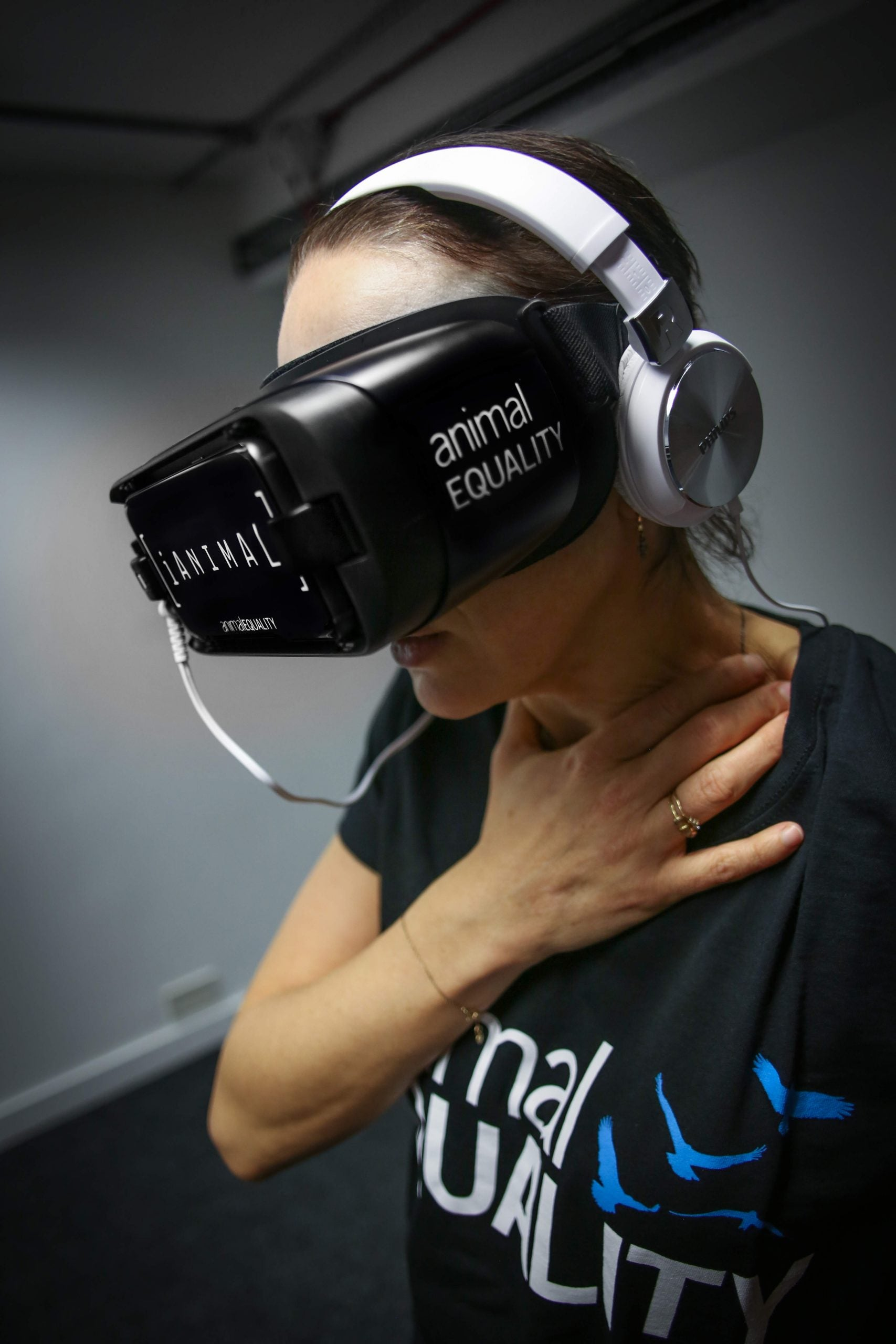 Could virtual reality help improve the lives of farm animals?