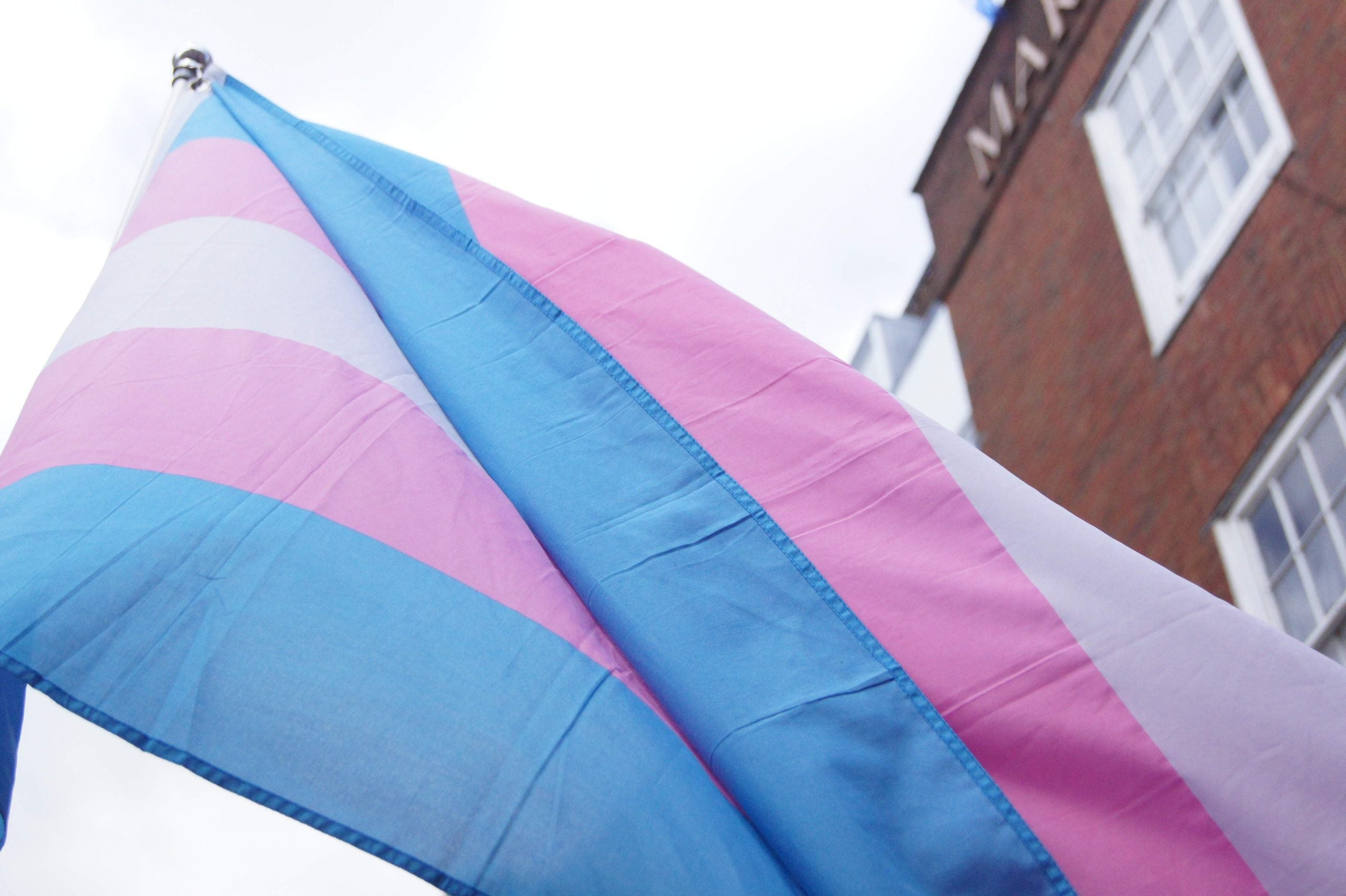 Trans pride is great but it's not enough to camouflage discrimination