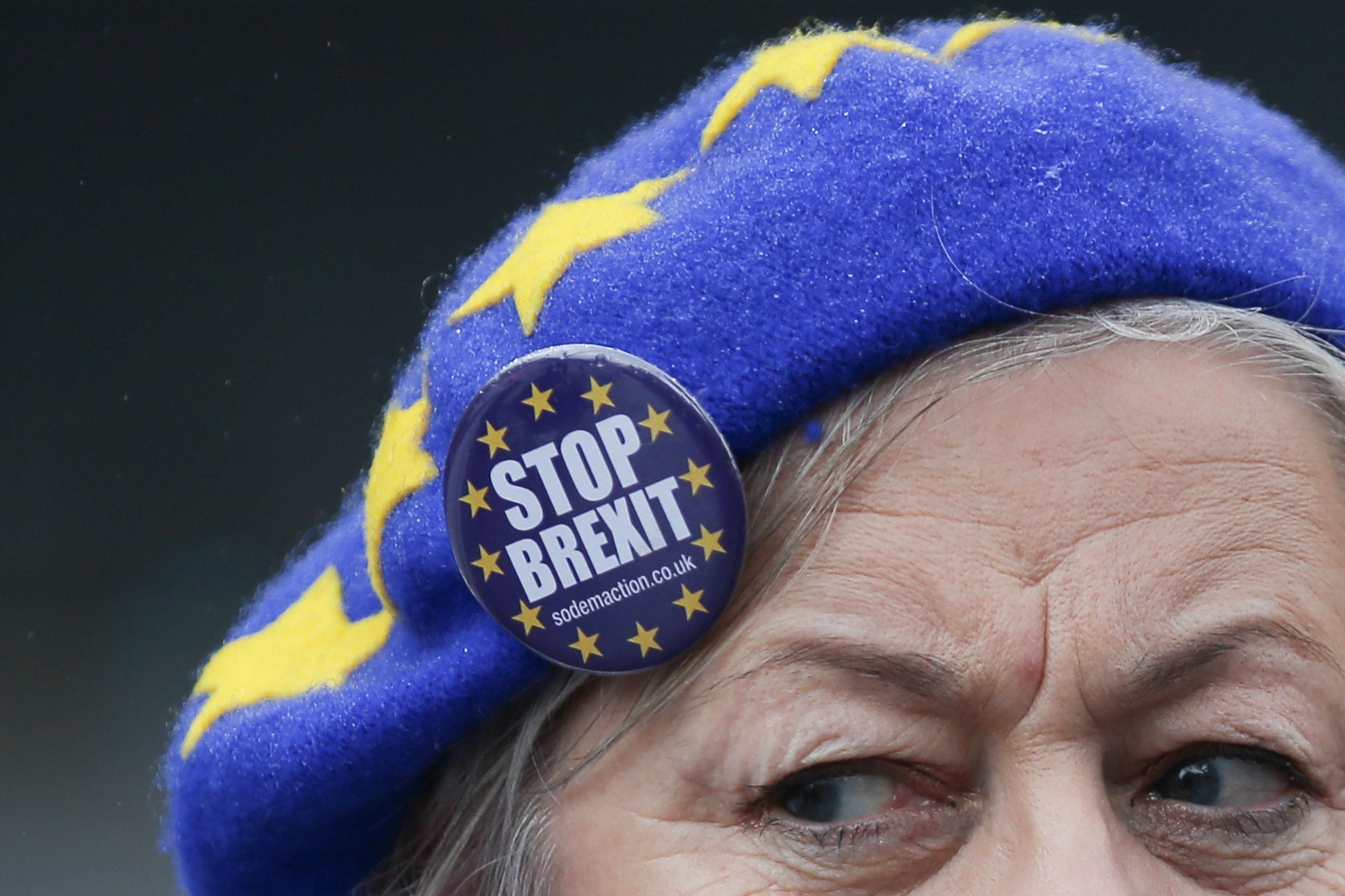 Maroon passport brooches and EU flags: how Remainers are getting radicalised