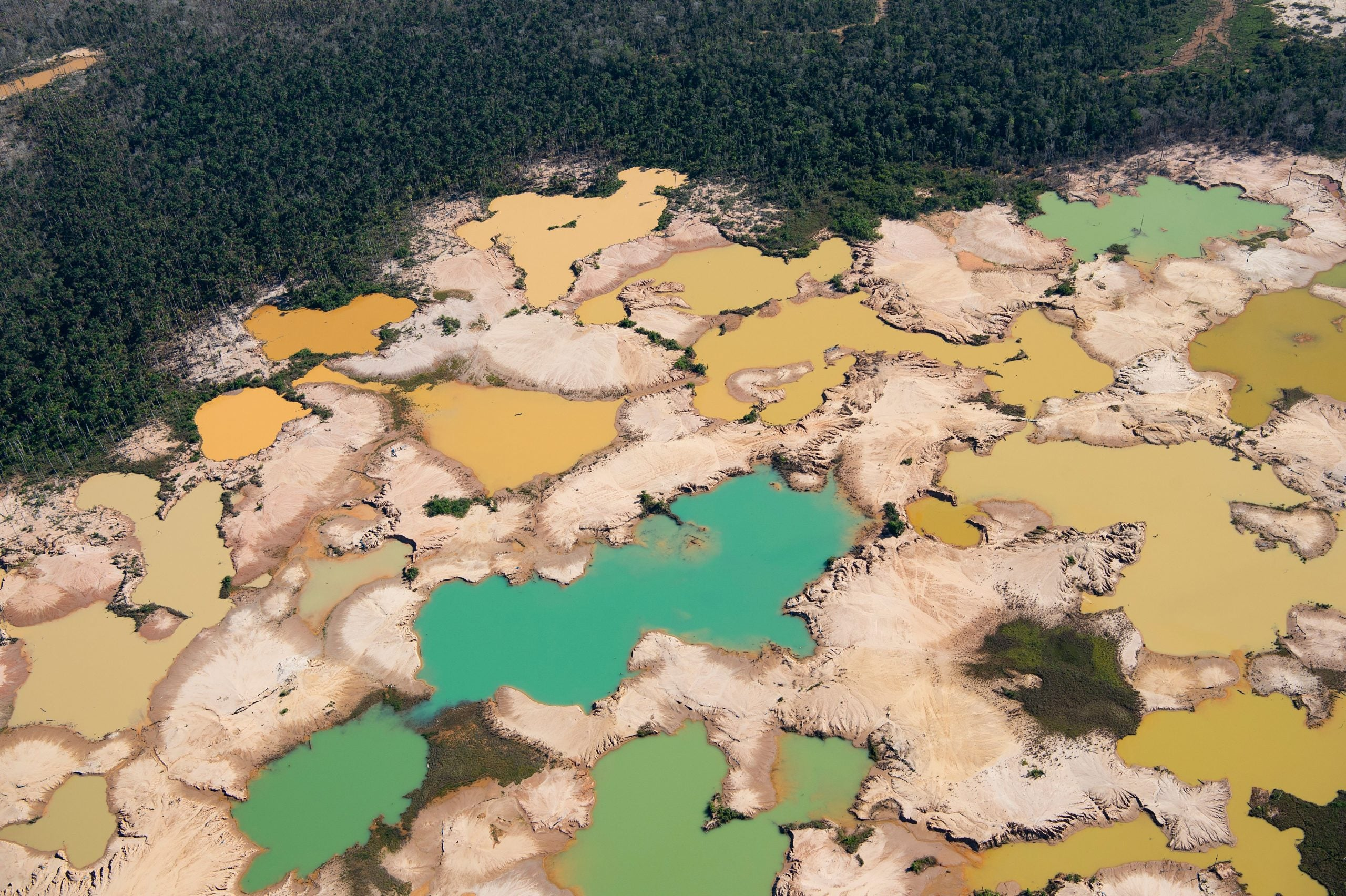 Why land is the next frontier in environmental breakdown