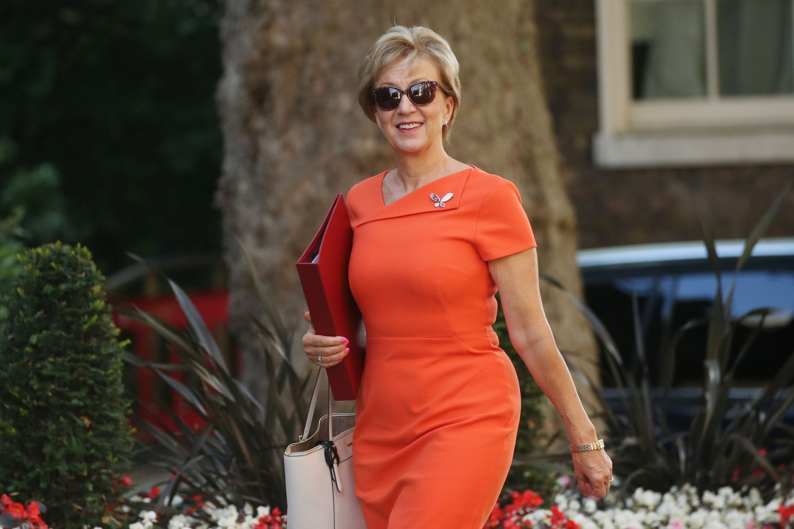 Commons Confidential: Leadsom's leakers