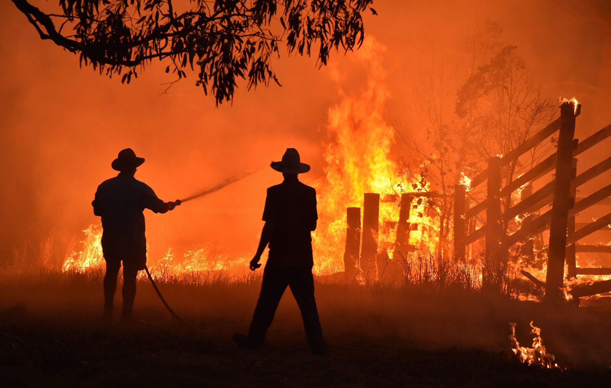 First Thoughts: Blame for the flames, a cabinet of drivel, and the altruism analgesic