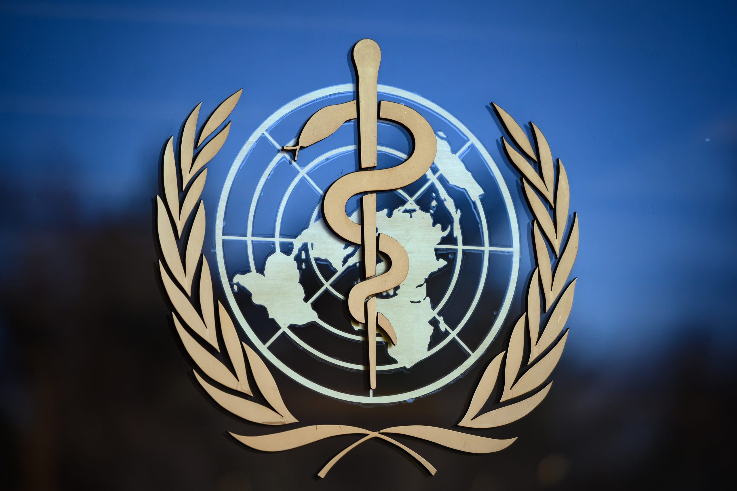 How the World Health Organisation's failure to challenge China over coronavirus cost us dearly