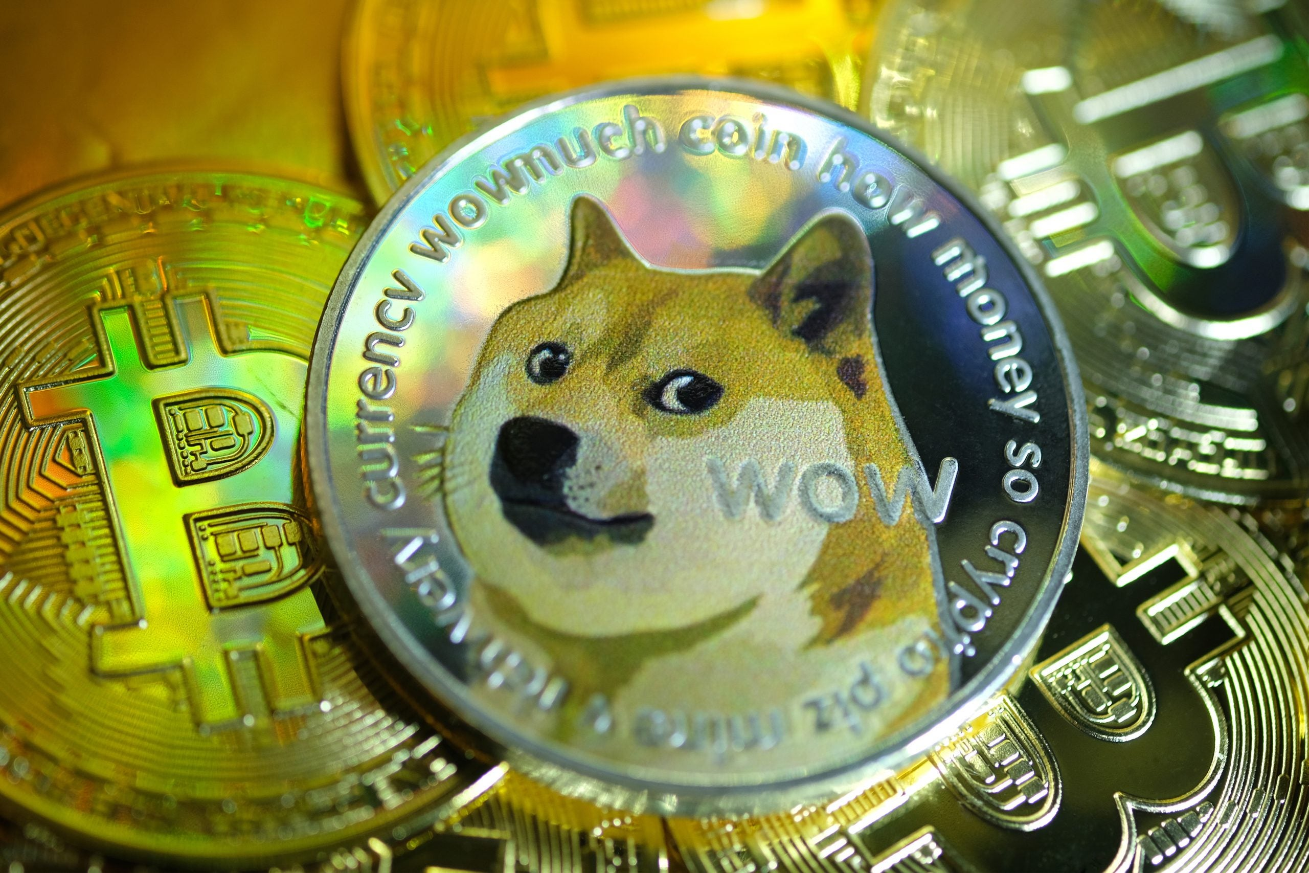 Is the Dogecoin bubble as irrational as it looks?
