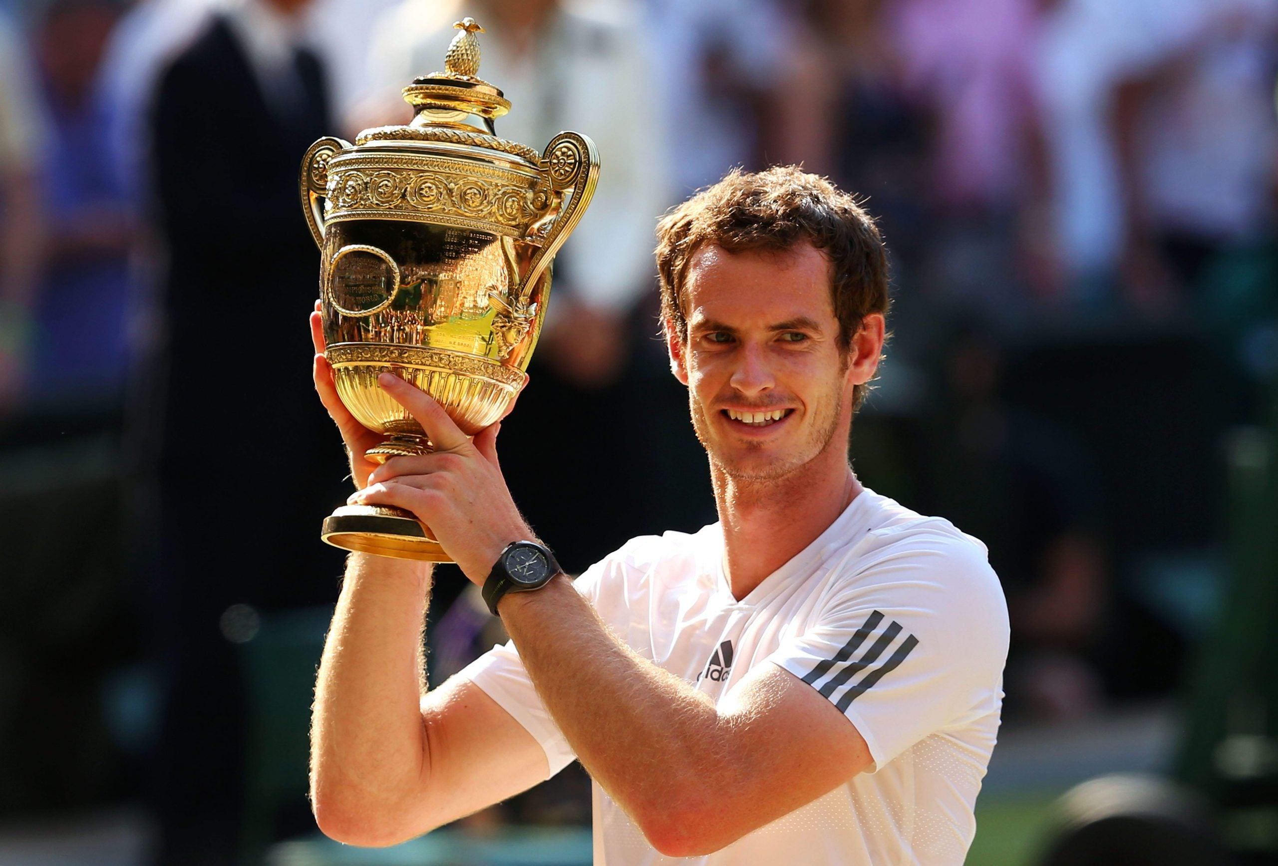 Andy Murray has stupendous steel and discipline - and yet...