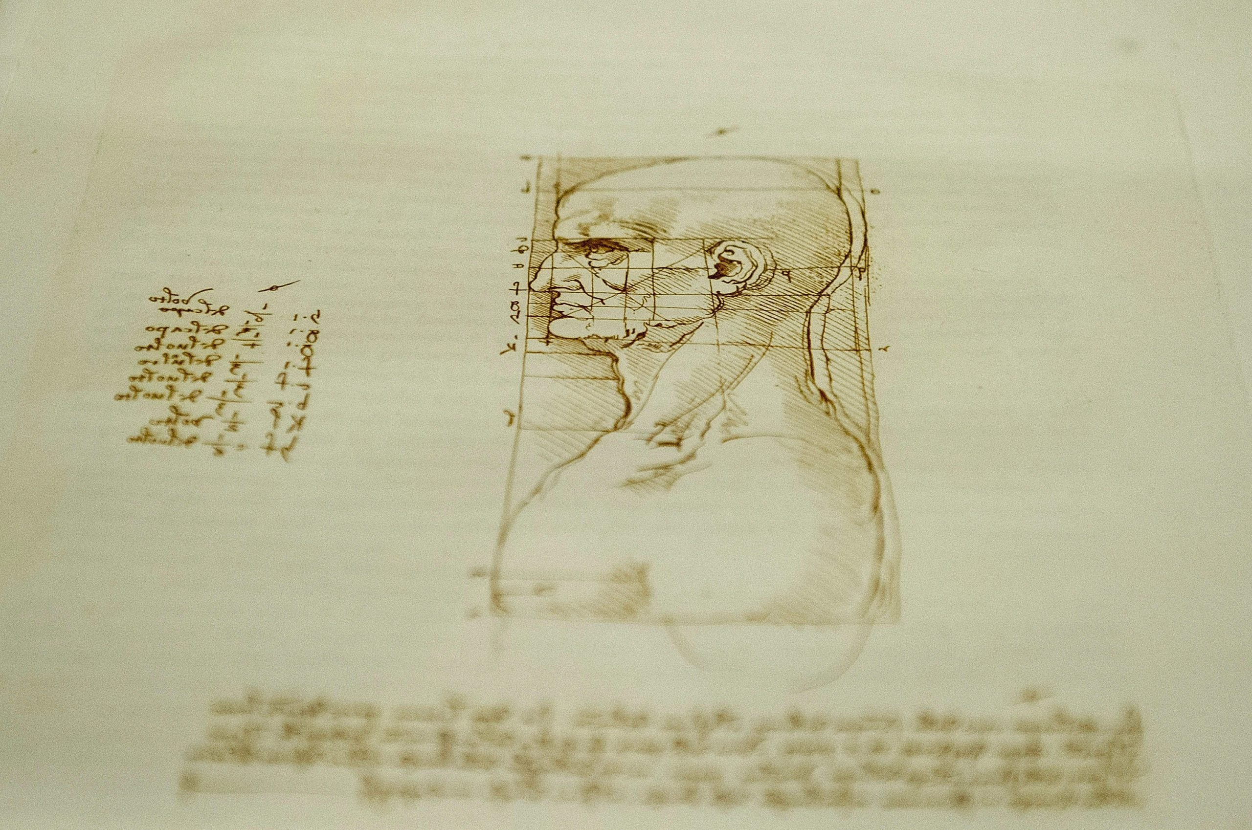 The Da Vinci Genome – how science drives art and art drives science