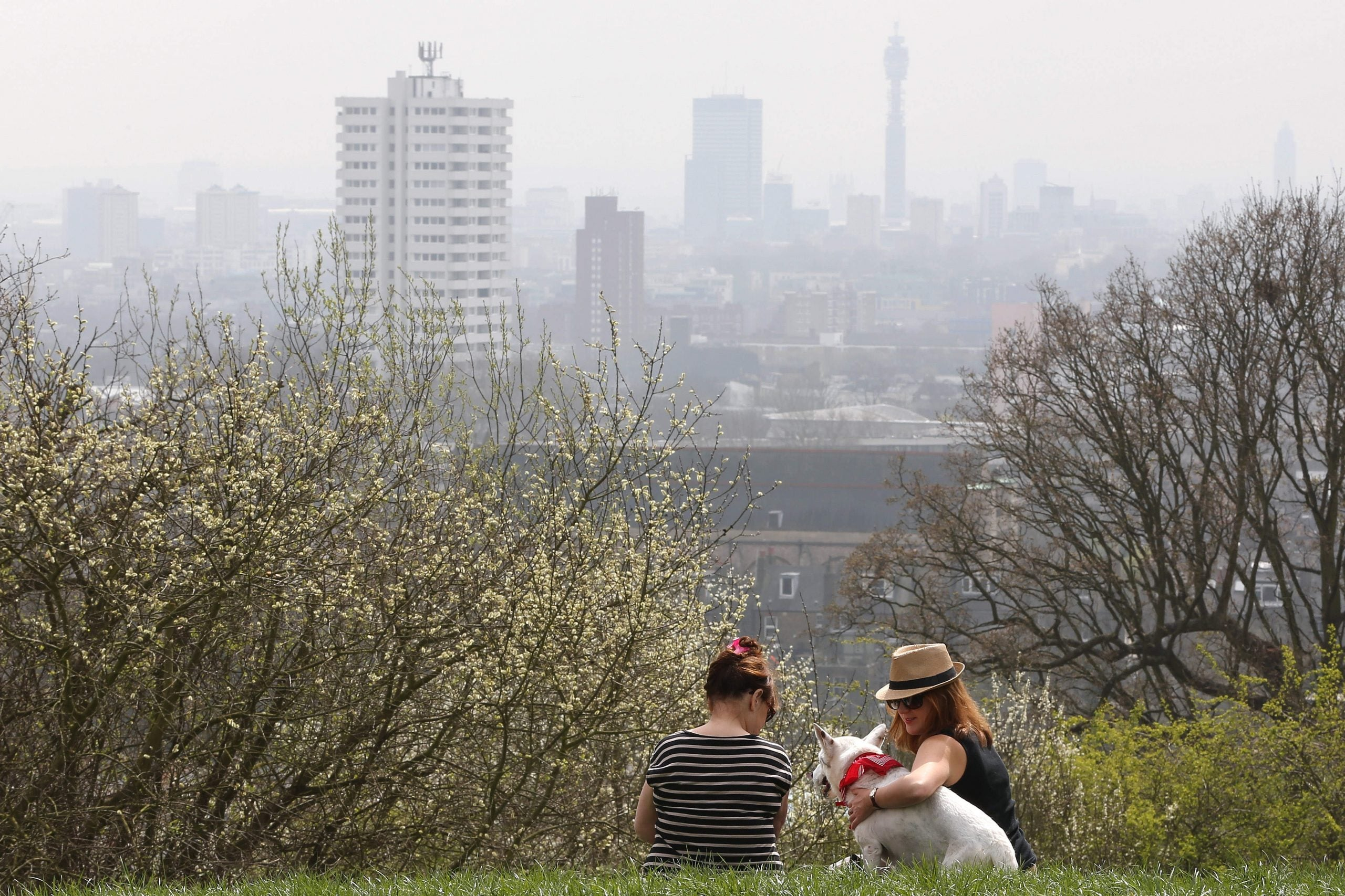 The next Mayor should channel the Victorians to make London the greenest capital in the world