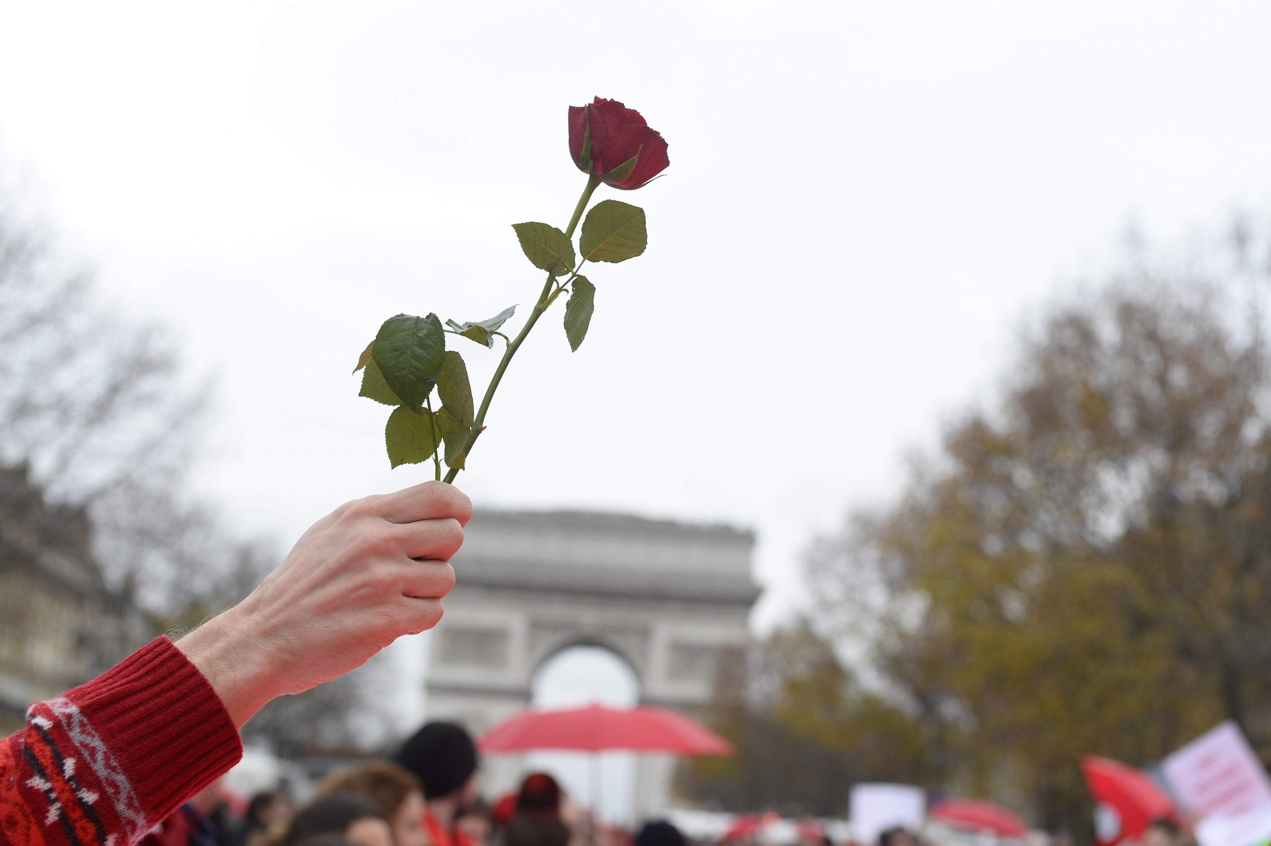 """Labour needs a """"red rose"""" moment"""
