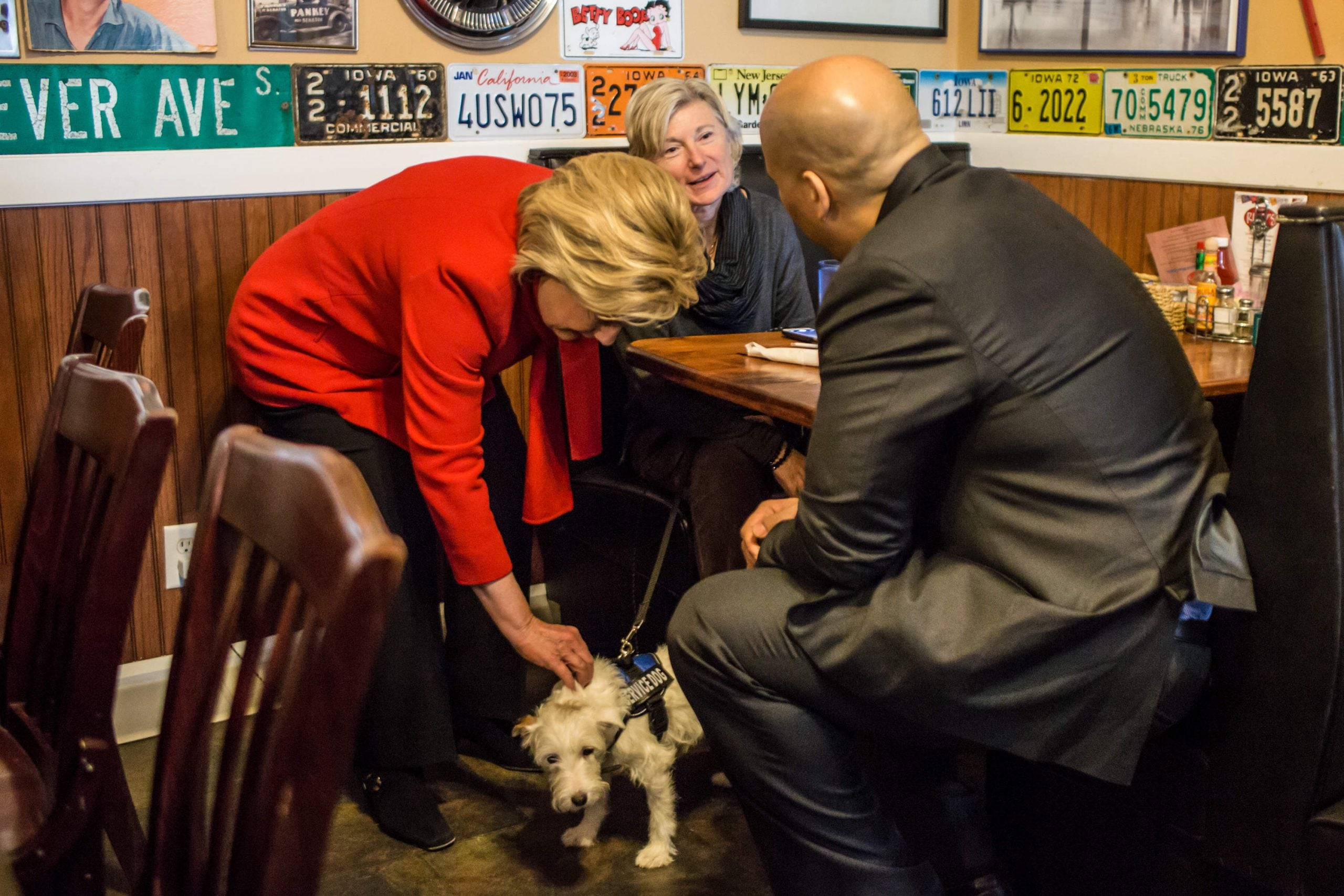 What does Hillary Clinton need most right now? To get a dog