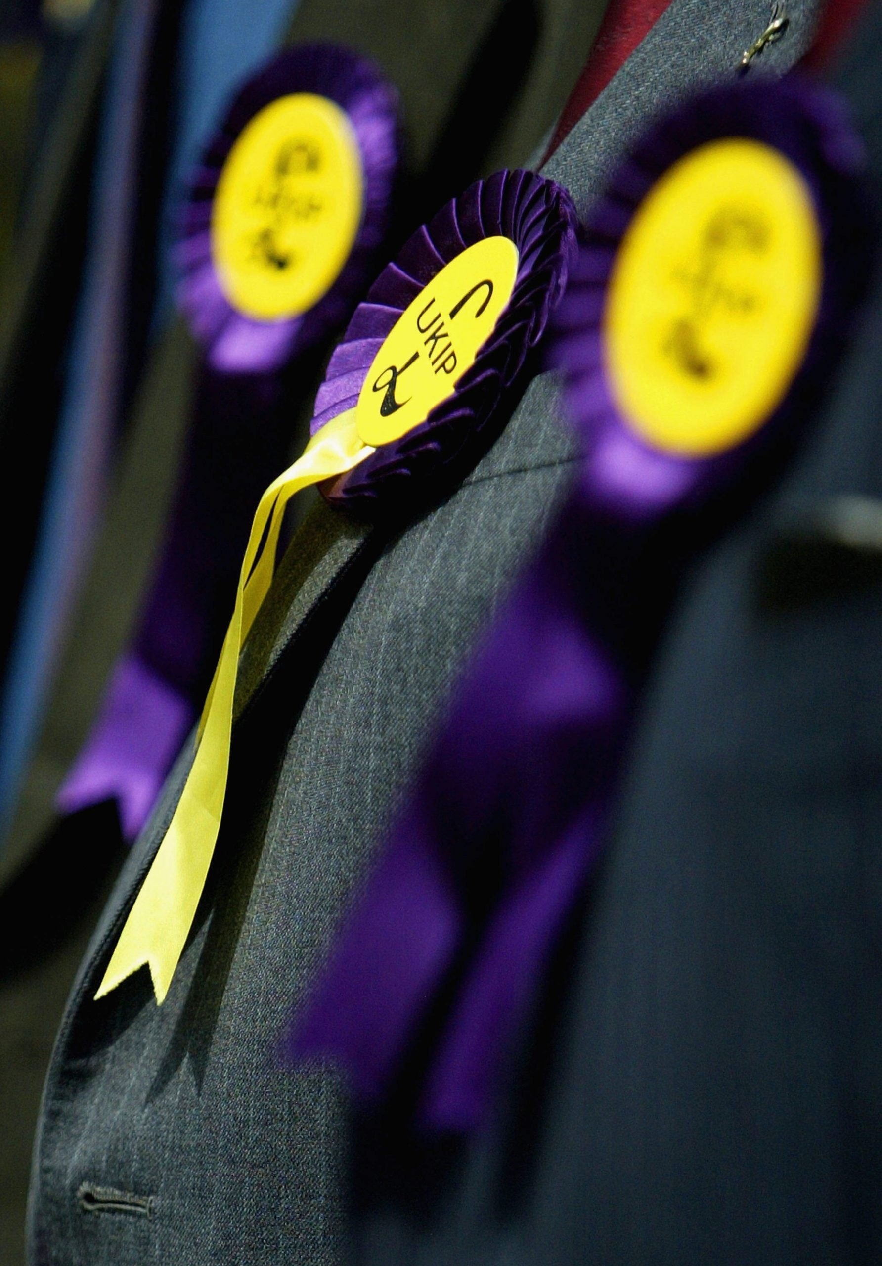For the Ukip press officer I slept with, the European Union was Daddy