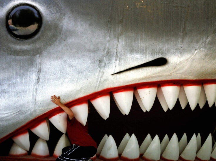 Why you should sink your teeth into the 1974 novel Jaws
