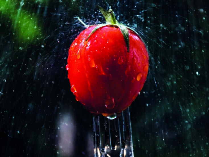 Don't waste valuable water on your lawn – you'll only regret it when your vegetables bolt