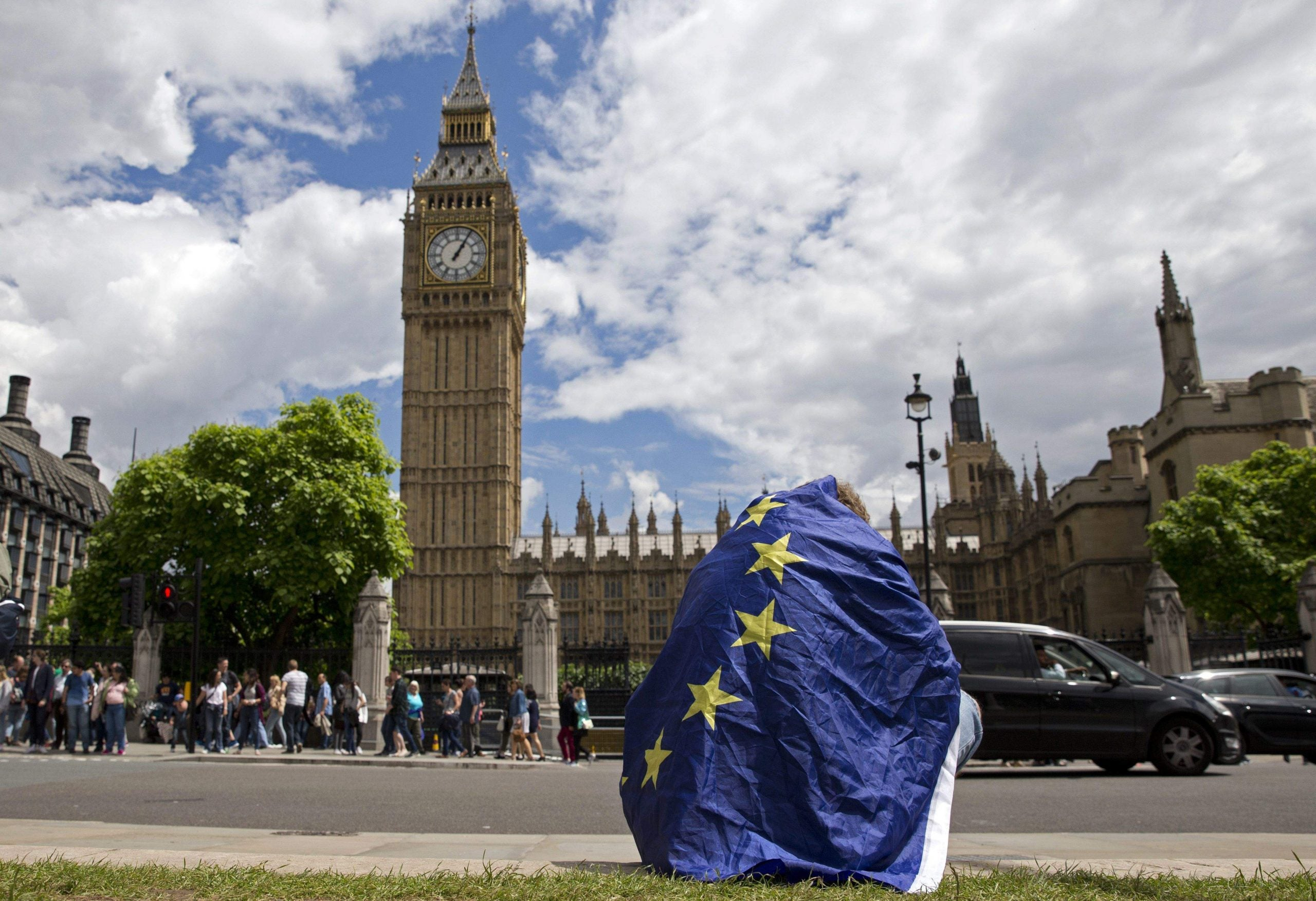 The Remainers aim to beat Brexit by playing a long game