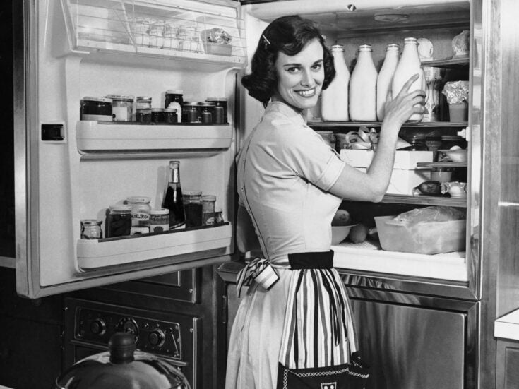 Why the invention of the fridge could be responsible for our love of fake news