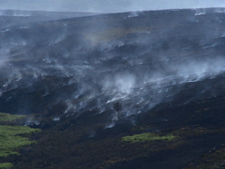 Fires like Saddleworth Moor will become increasingly normal until we fight environmental collapse