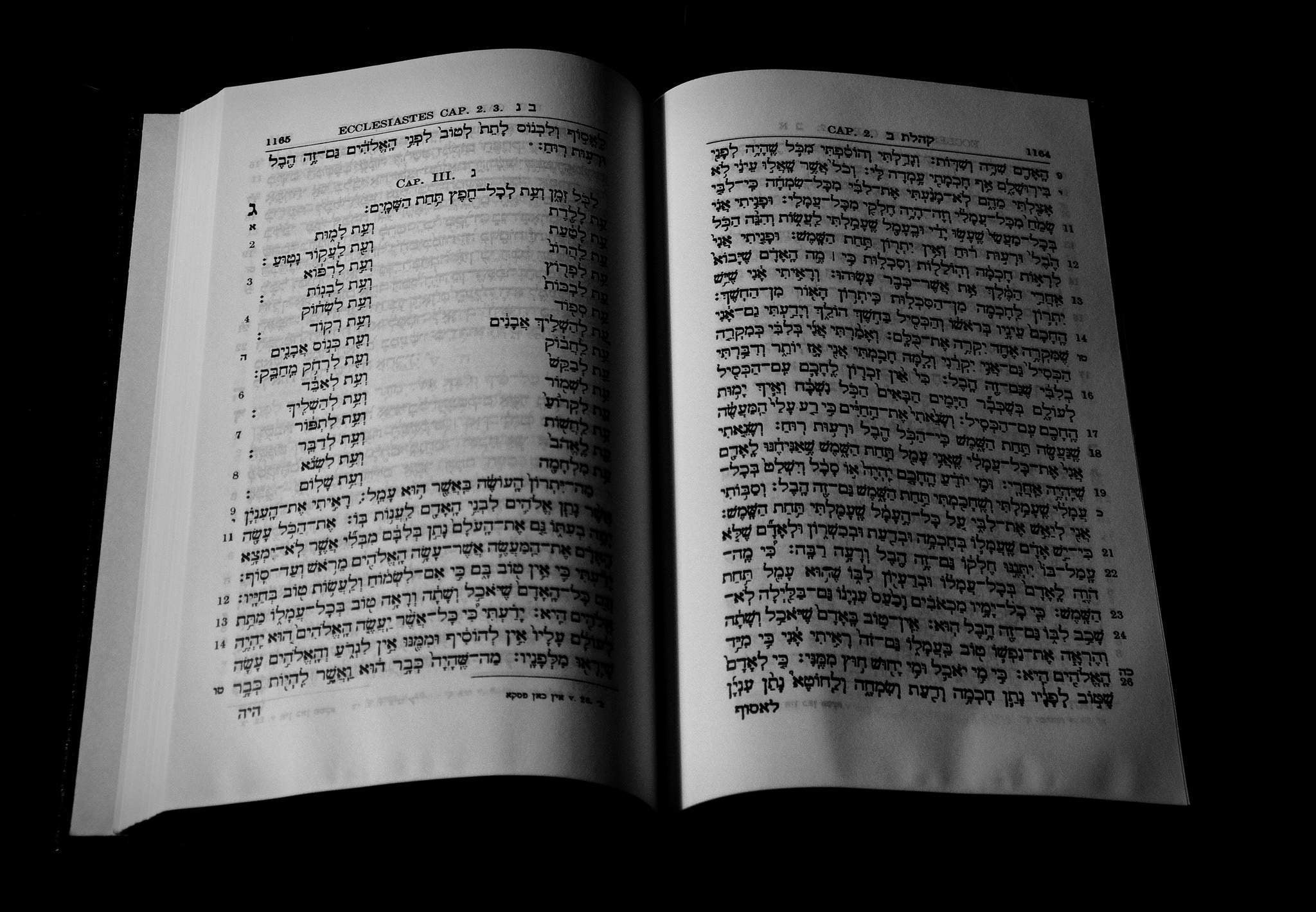 My Hebrew Tuesdays, why modesty is overrated, and how I became a grand dame