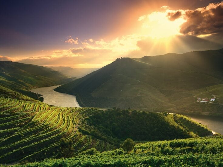 Wine is born from hardship – and few have had as much to overcome as port