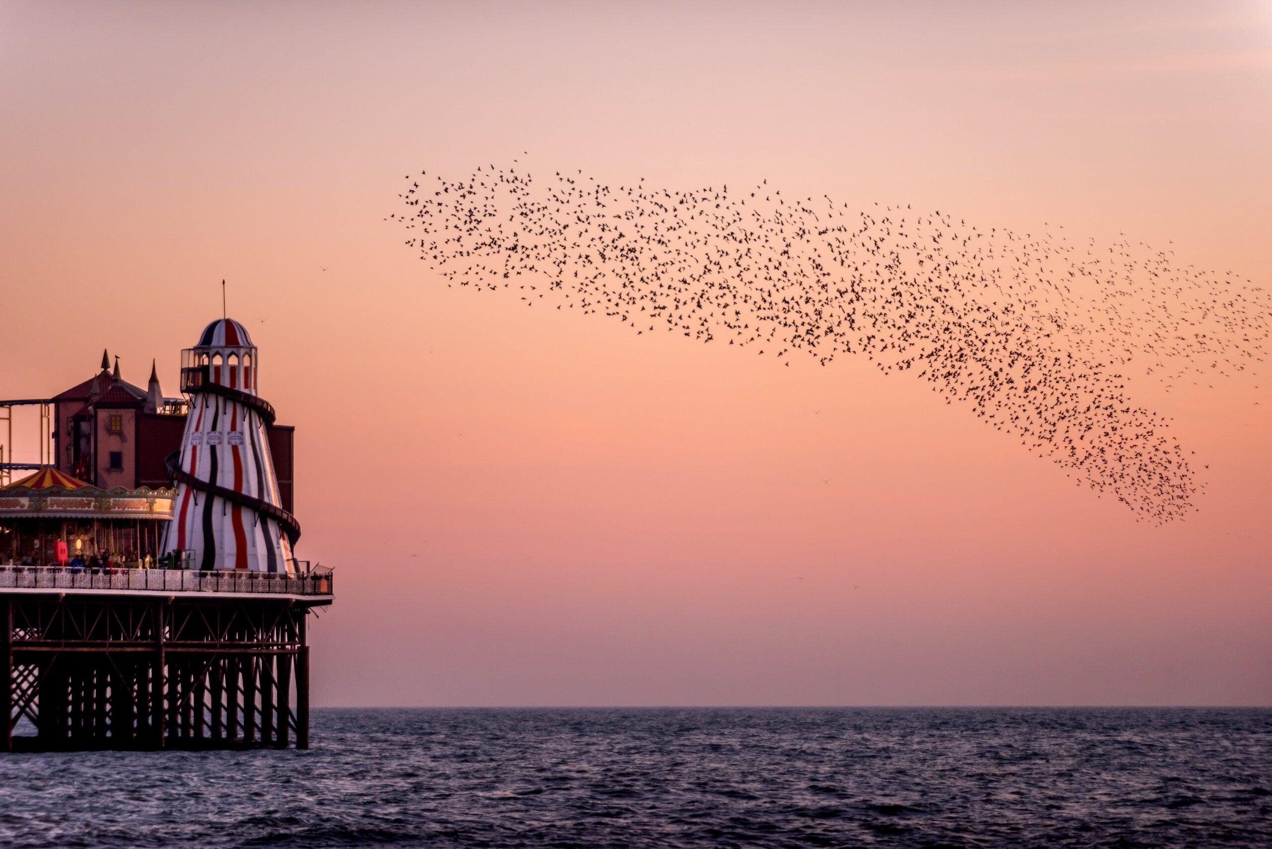 Howard Jacobson's Diary: Soho never sleeps – so I escape to see the rides at Brighton Pier