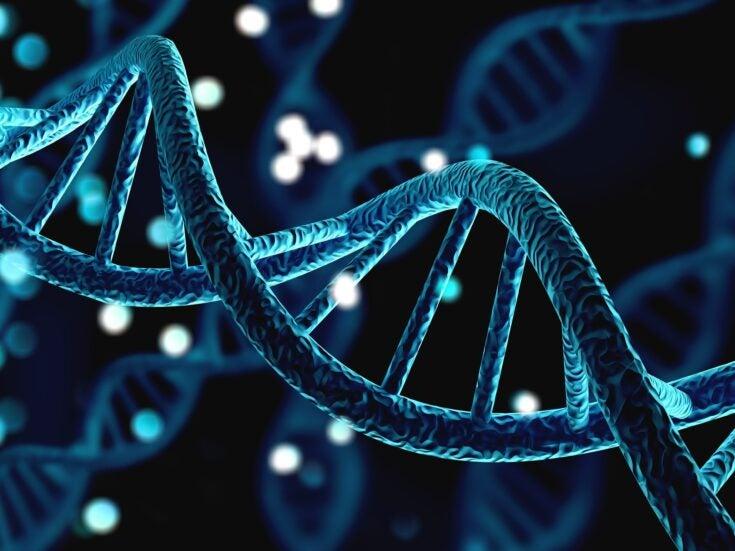 Coronavirus and the genome hunters