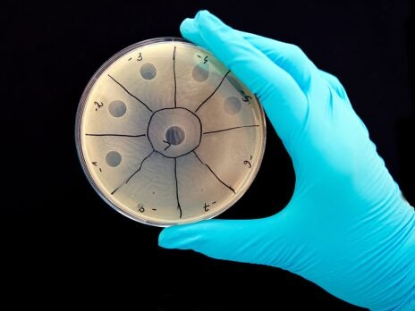 Could bacteria-eating viruses be drafted to replace antibiotics?