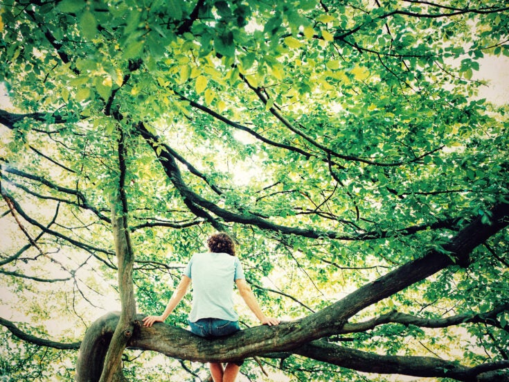 Personal Story: Taking refuge in the treetops