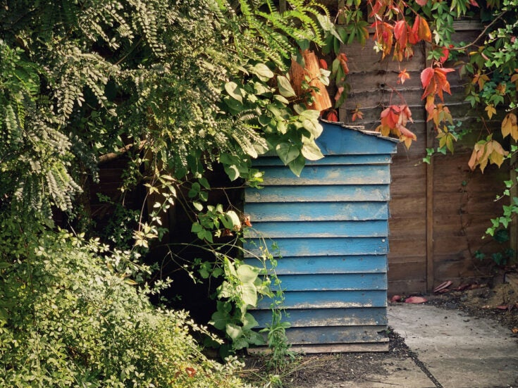 As Shakespeare reminds us, the goodness of manures and composts is often misunderstood