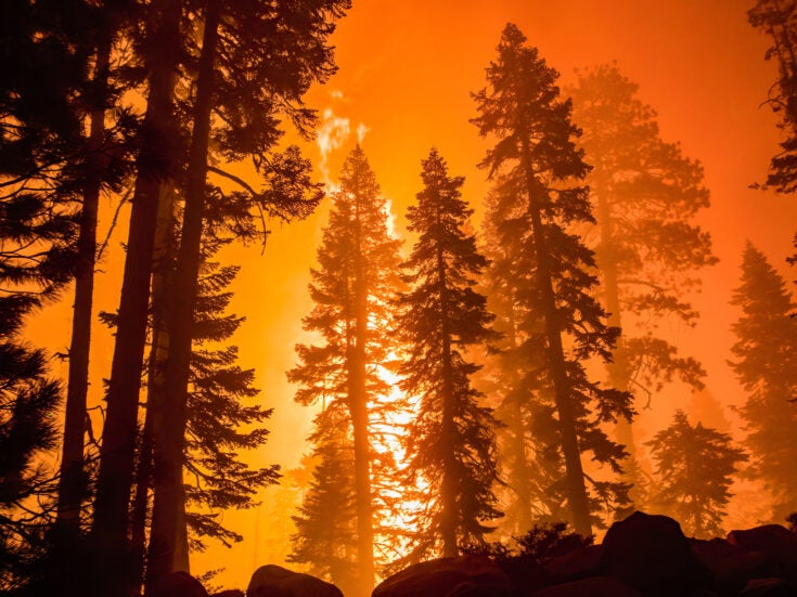 How public concern over climate change has surged