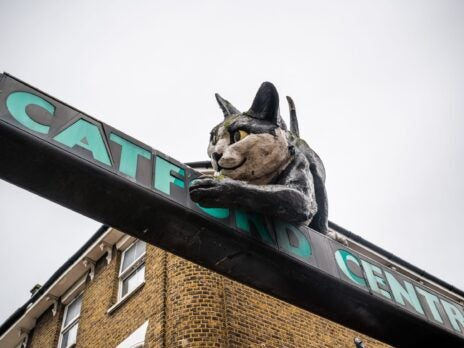 """Goodbye, Catford? When planners label your childhood haunt an """"Opportunity Area"""""""