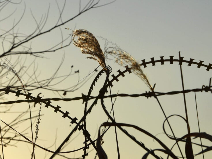 From war and slavery to prison – life inside an immigration detention centre