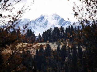 A trip to the Caucasus mountains, what the pandemic revealed about power, and Putin's fear